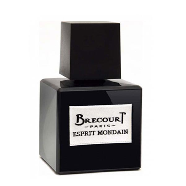 عطر ادکلن برکورت اسپیریت ماندین-Brecourt Esprit Mondain