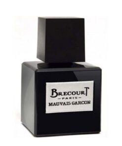 عطر ادکلن برکورت موویز گارسون-Brecourt Mauvais Garcon