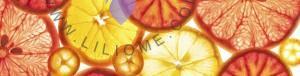 گروه بویایی مرکبات - Citrus Olfactory Group
